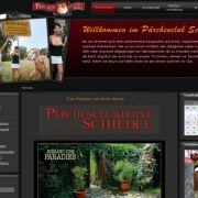 PC Schiedel